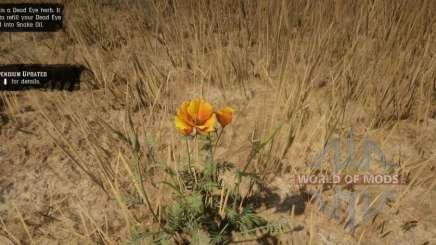 Amapola de la pradera en RDR 2