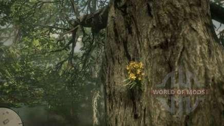 Orquídea de cigarros en RDR 2
