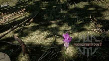 Boca de dragón Orquídea en RDR 2