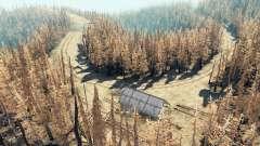 Ash bosque v2.5 para Spin Tires