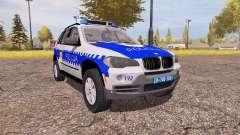 BMW X5 4.8i (E70) serbian police