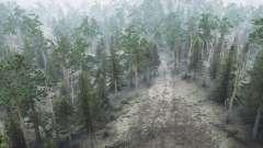 Bosques de coníferas para MudRunner