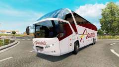Bus traffic v1.7