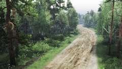 Espeluznante bosque para Spin Tires
