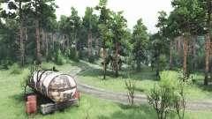 Caminar en el bosque para Spin Tires