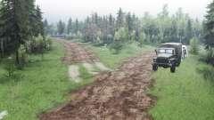 Carretera de la selva