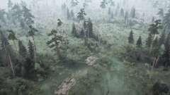 Bosque pantanoso 2 para MudRunner
