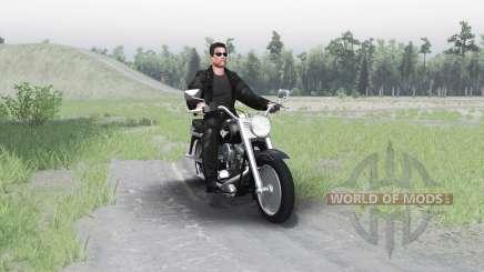 Harley-Davidson FLSTF Fat Boy para Spin Tires