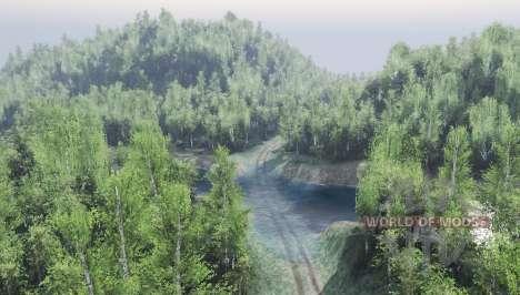 Bosque ruso para Spin Tires
