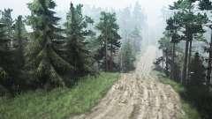 Extrema caminos C. Petrashovka