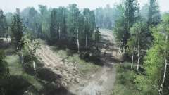 Birch grove para MudRunner