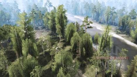 El bosque 2 para Spintires MudRunner