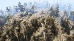 El área de bosque
