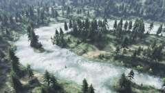 Los bosques de pantano para Spin Tires