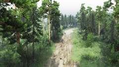 De reserva forestal para Spin Tires
