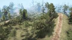 Trail Forest para MudRunner