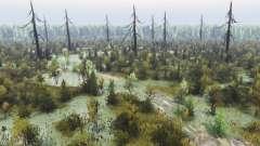 Espeluznante bosque 2 para Spin Tires