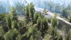 El bosque 2