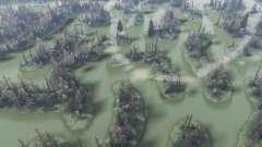 Los bosques de pantano