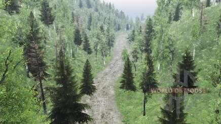 Un Pedazo De Altai para Spin Tires