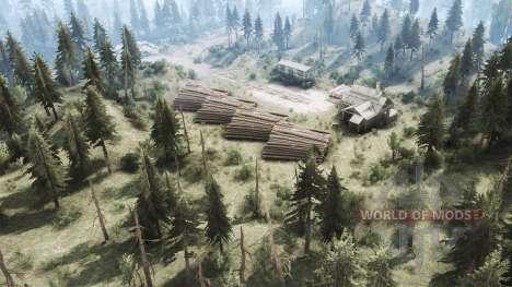 Bosque para Spintires MudRunner
