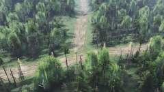 El bosque seco de v2.0 para Spin Tires