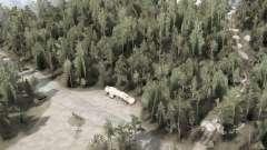 Kane Creek Forest