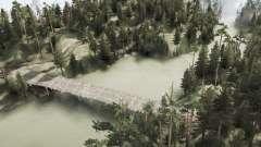 Pino estanque