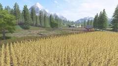 Italiano de la granja
