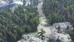 Cerca De Cedar para Spin Tires