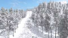 Arctic Logging v5.1 para Farming Simulator 2017